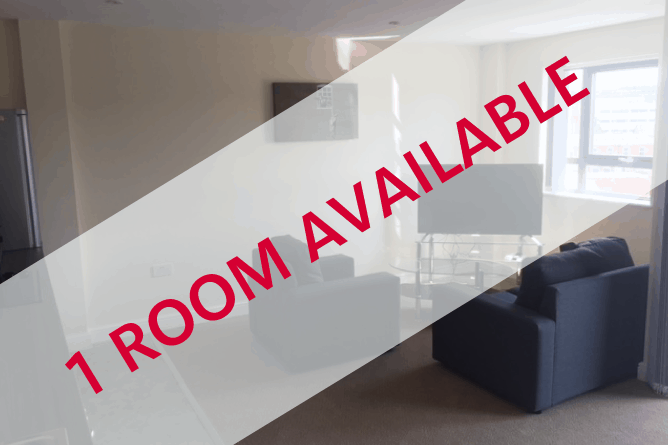 The Sheldon – 1 Room Available in 2 Bedroom Apartment